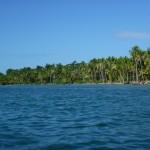 Playa de las Estrellas: 5