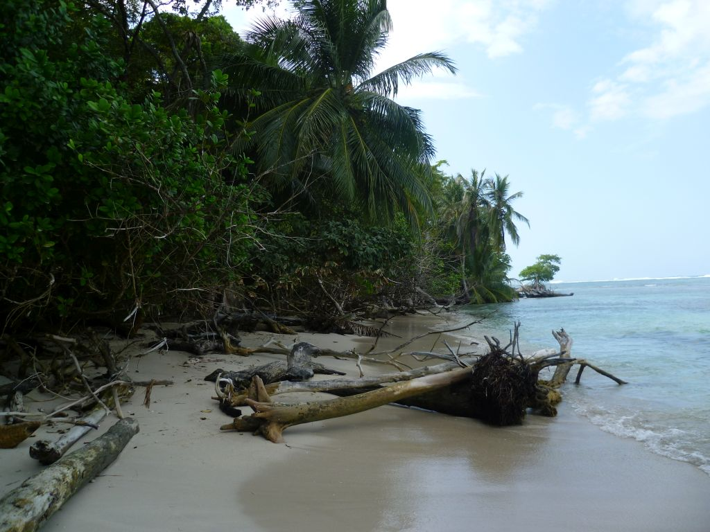 Isla Zapatilla 7