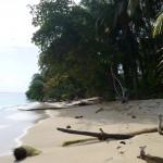 Isla Zapatilla 12