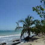 Cahuita National Park: coastal part