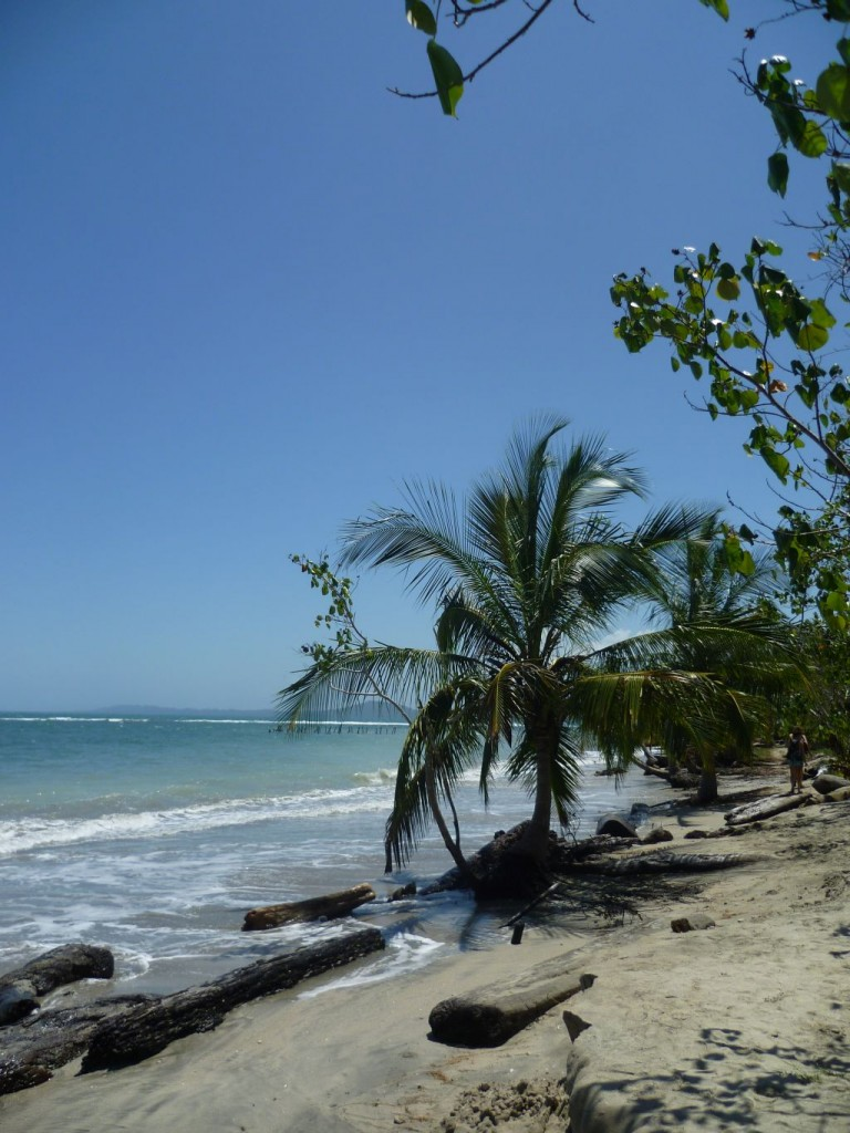 Cahuita National Park: coastal part
