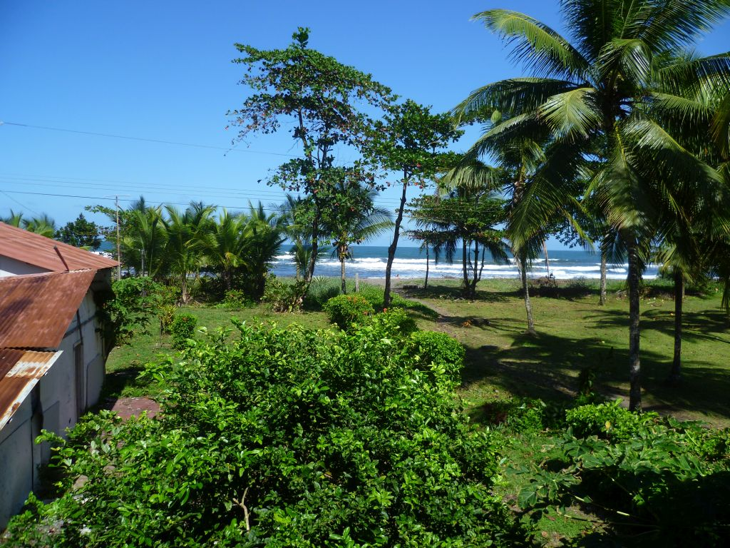 Trip to Tortuguero 8: view from my window