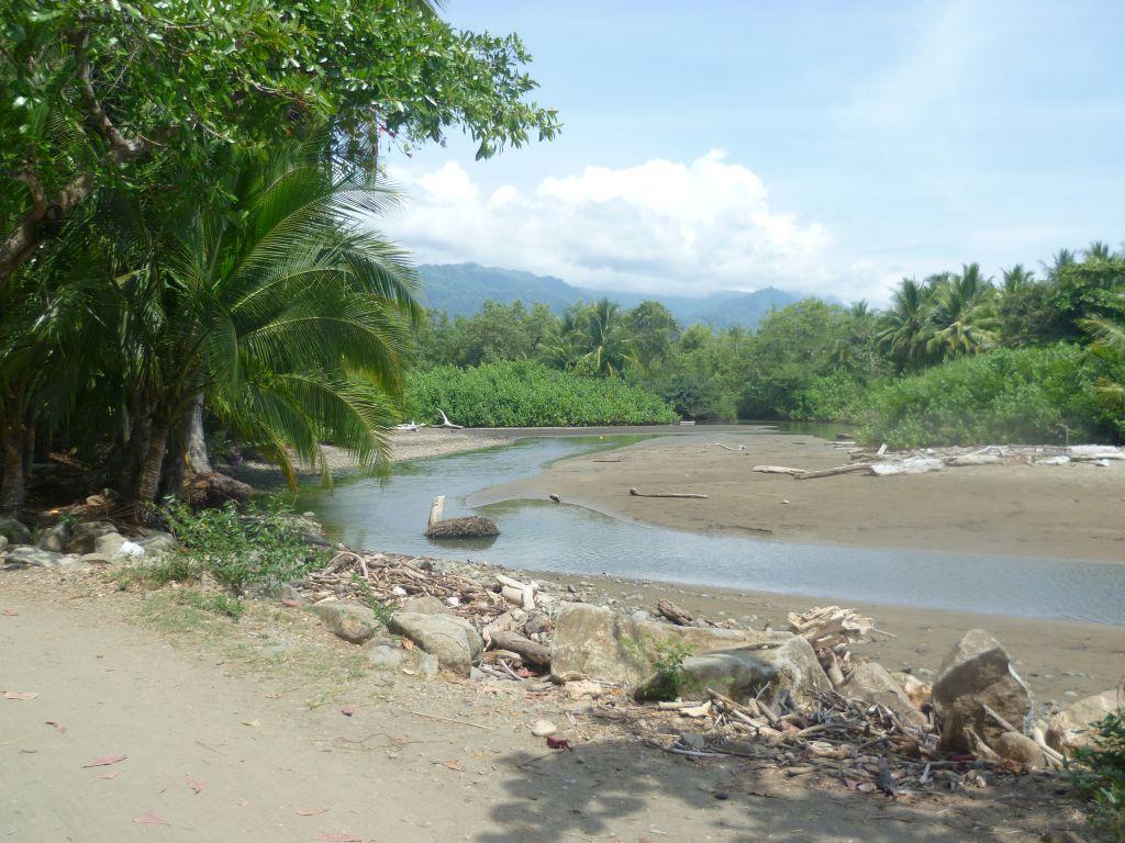 Parque Nacional Marino Ballena 1: beach