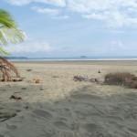 Parque Nacional Marino Ballena 2: beach