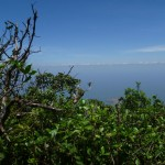 Isla de Ometepe 5: view from the highest point on volcan Maderas