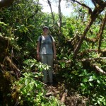 Isla de Ometepe 4: me at the highest point on volcan Maderas