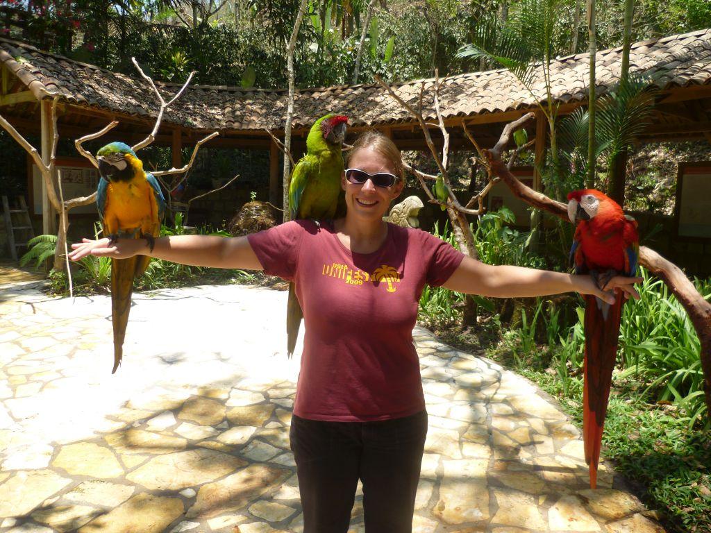 Parque de Aves 4