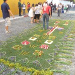 Antigua -flower carpet
