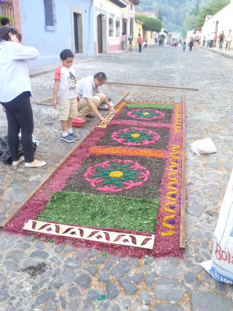 Antigua - mixed flower and wood carpet