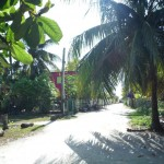 Caye Caulker 6: in the streets (picture taken by Cathryn)