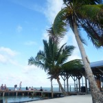 Caye Caulker 1: at the split