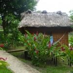 El Retiro 3: our four-dorm-bed cabana
