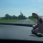 On the Road: Marie