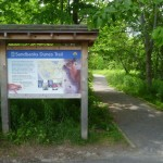 Sandbanks Provincial Park 1: Sandbanks Dunes Trail