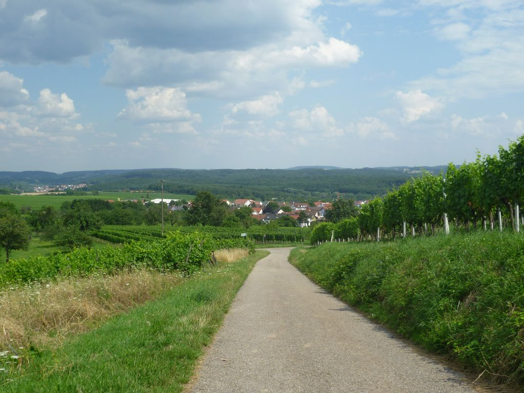Between Malsch and Malschenberg