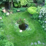 View from my home office into the lovely garden area