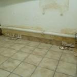 Wet wall in my basement room
