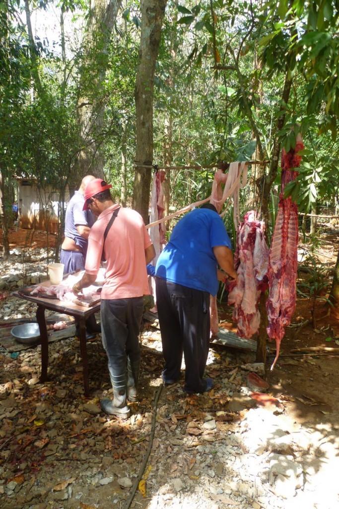 Fleischproduktion